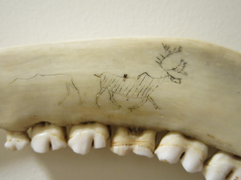 Inuit Art Caribou Jawbone Bone Knife Miscellaneous